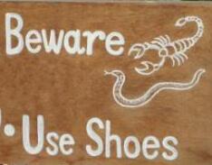 Slangen en Schorpioenen